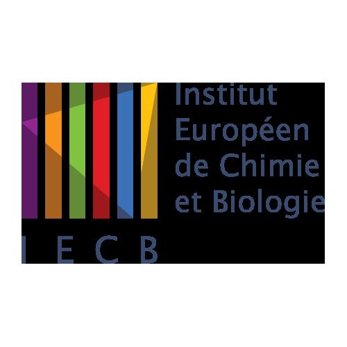IECB logo